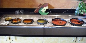 El Ranchero Salsa Bar